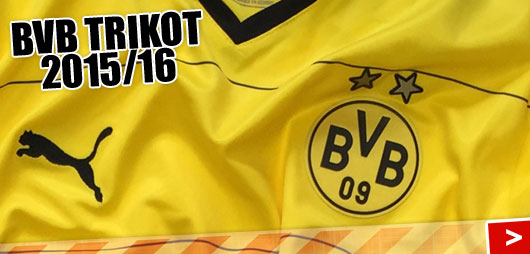 BVB Trikot 2016